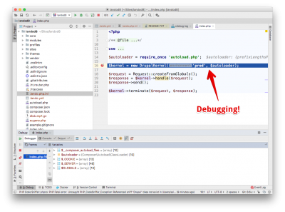 You are debugging
