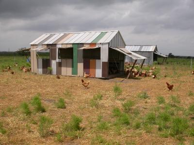 Coyote Creek Pastured Chicken House